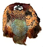 American Feathers Ringneck Pheasant Skin #1 Grade - Product of U.S.A.