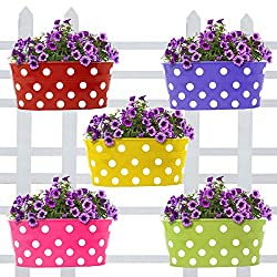Trust Basket Dotted Oval Railing Planters