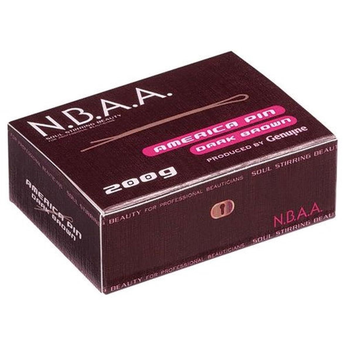 ロゴ研磨剤の前でNB-P01 NBAA.アメリカピン 200g