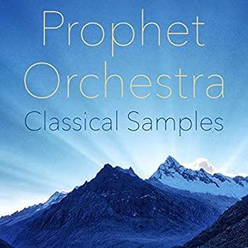 Prophet Orchestra Classical Samples