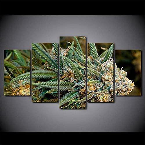 5 piezas de planta de marihuana lienzo arte de la pared imagen imagen HD impresión decoración del hogar imágenes cartel-200 * 100 cm-enmarcado