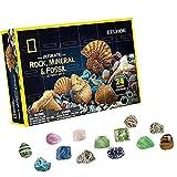 Calendario de Adviento de 24 días de Navidad 2021, colección de piedras preciosas de cristal para niños, kit de ciencia mineral y rocas para niños y niñas, regalo de cuenta regresiva de Navidad