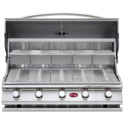 Big Sale Cal Flame BBQ09G05 5-Burner G5 Stainless Steel Gas Barbecue Grill