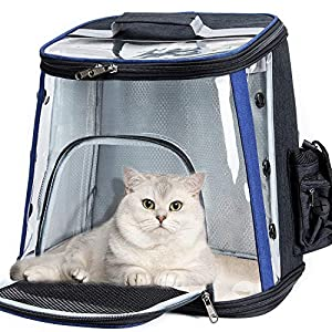 Dubulle Black and Navy Pet Carrier Backpack, Cats Small Dogs and Puppies, Designed for Travel, Hiking, Walking Outdoor Use Black and Navy with Storage Bags