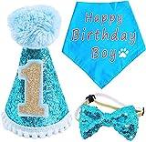 BIPY Dog 1st Birthday Hat Bandana...