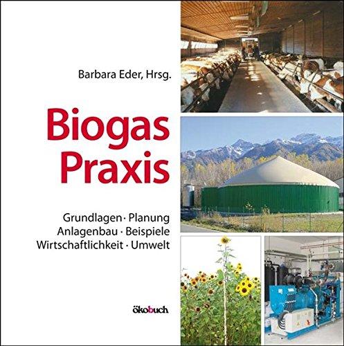 Biogas-Praxis: Grundlagen, Planung, Anlagenbau, Beispiele, Wirtschaftlichkeit, Umwelt