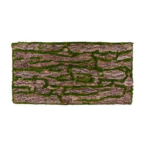 REPITERRA Terrarium Rückwand 3D Hintergrund Deko Naturlook Rinde 116x58cm für 120x60cm Terrarien