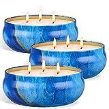 Velas de citronela grande exterior interior, OFUN 3 piezas Vela perfumada Vela de cera de soja natural con 3 mechas para camping hogar picnic decoracion-3x18.5 OZ