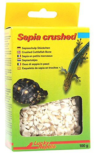 Lucky Reptile Sepia Crushed 100 g, 1er Pack (1 x 100 g)