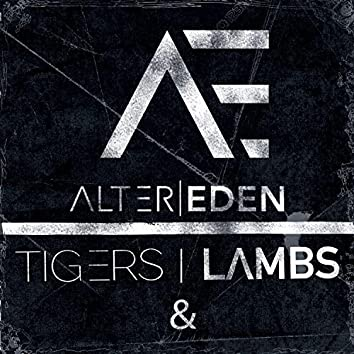 Tigers and Lambs