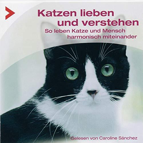 Katzen richtig lieben und verstehen Titelbild