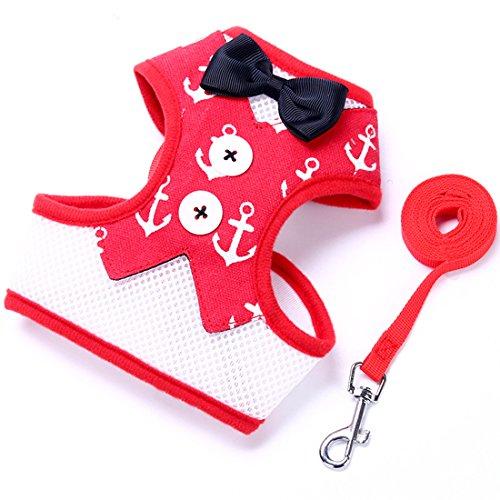 Pak stijl hondenharnas voor kleine honden puppieservies kattenharnas Air mesh verstelbare zachte borstharnas huisdier bowknot vest met 1,2 m hondenriem Walking lijn set, Small, D