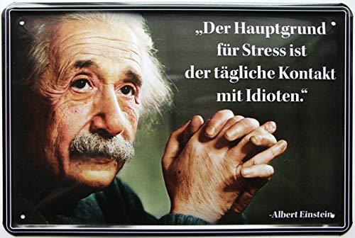 Hauptgr& für Stress sind Idioten 20x30 cm Blechschild 51
