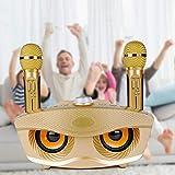 Gogh Máquina de karaoke portátil para adultos y niños, sistema de karaoke inalámbrico Bluetooth con 2 micrófonos, compatible con TV ordenador, teléfono, dorado