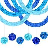 LAMEK 12 Piezas Guirnalda de papel de Fiesta Decoraciones Colgantes Decoración de Papel de Seda Bandera Decorativa con Pompones de Papel para Cumpleaños Bodas Fiesta Banquetes Graduado
