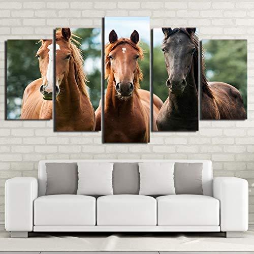 WHFDH Woonkamer Decoratie Canvas 5 stuks dier drie paard poster muurkunst Hd Print Schilderen Modern 10x15 10x20 10x25cm Geen frame.