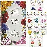 Blumen Samen für Garten und Balkon: 10 Sorten Premium Blumensamen Tütchen als Pflanzensamen Set – Balkonblumen Samen –...