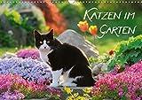 Katzen im Garten (Wandkalender 2021 DIN A3 quer)