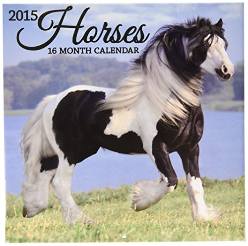 2015 Wall Calendar - 16 Month Horses Design