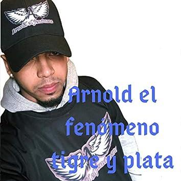 Tigre Y Plata