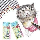 othulp pastelli acquarellabili matite Colorate Bambini matite Colorate per Adulti matite Colorate per Adulti matite Colorate