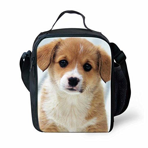 Sannovo Puppy Corgi Girls Reusable Tote Lunch Bag Snack Cooler Bag Adult Lunch Box