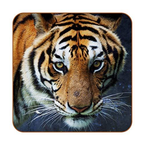 Tiger Animal - Posavasos de piel sintética para bebidas, paquete de 6 posavasos cuadrados para bebidas para el hogar o el bar, regalo de inauguración de la casa