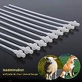HEEPDD 10 Unids Inseminación Catéter Desechable Artificial Inseminación Cría Tubo de Catéter para Perro Ovejas Canino