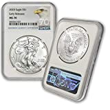 2020 Silver American Eagle MS-70 NGC (Early Releases, Eagle Label) by CoinFolio $1 MS70 NGC