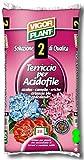 Terriccio per Acidofile 20 litri Vigorplant
