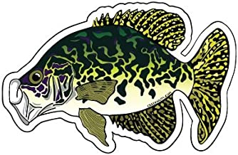 Mountain Creek Anglers Crappie Sticker Decal