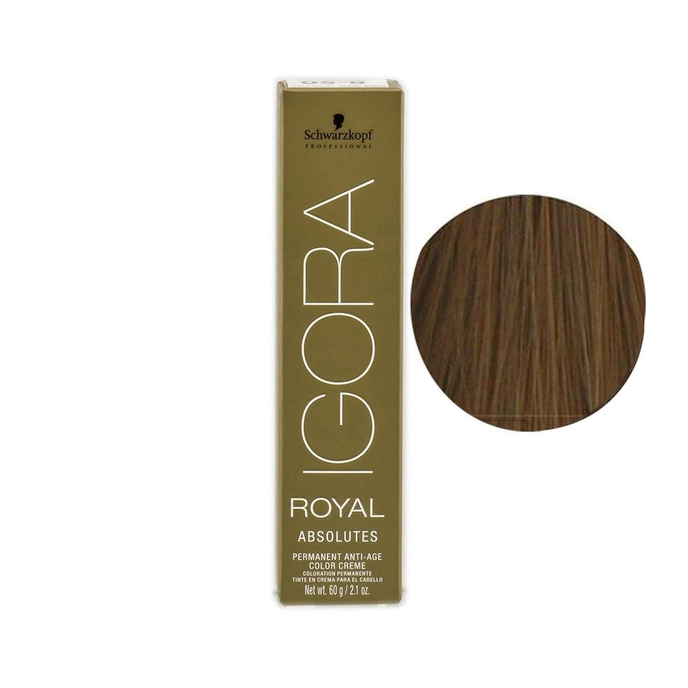 あからさま影のあるガラスSchwarzkopf プロフェッショナルIGORAロイヤルアブソリュート髪の色、 8月7日、ライトブロンドナチュラル銅
