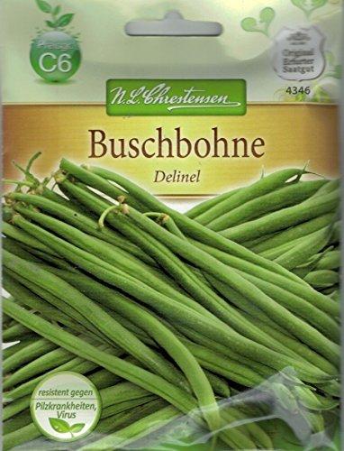 Chrestensen Buschbohne 'Delinel' Saatgut
