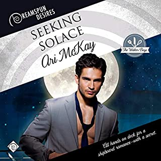 Seeking Solace audiobook cover art
