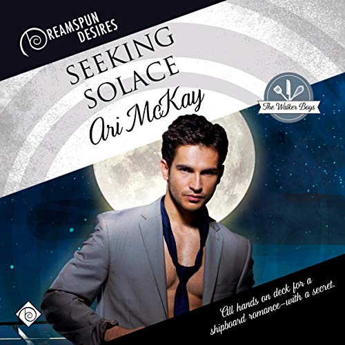 Seeking Solace cover art