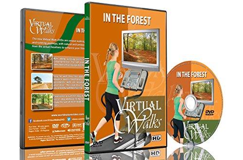 Virtuelle Spaziergänge - Im Wald für Indoor Walking, Laufband und Radfahrworkouts