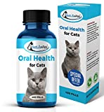 Top 10 Cat Dental Supplements
