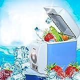 GFBVC Mini-Kühlschrank Cooler Elektro-Kühler und Wärmer Auto-Kühlraum 7.5L...