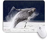 ECOMAOMI 可愛いマウスパッド 違反、跳躍アラスカザトウクジラ 滑り止めゴムバッキングマウスパッドノートブックコンピュータマウスマット