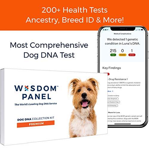 professional Wisdom Panel Award-Integrated Health, Characteristics, Dog DNA Testing for Ancestors