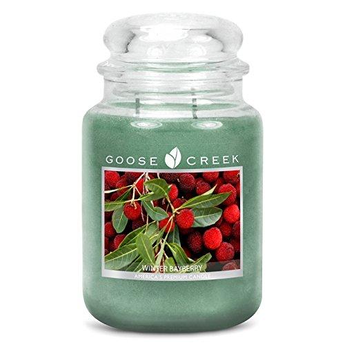 Goose Creek Bougie parfumée hiver Sapin 680 g