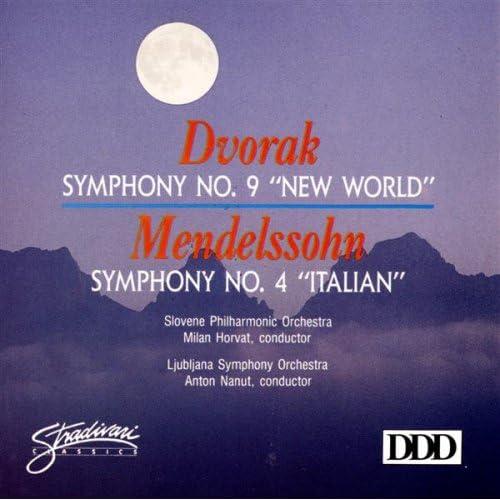 Amazon.com: Symphony No 9 In E Minor, Op 95