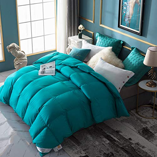 WarmKiss Premium Home Goose Down Comforter Queen 50oz Fill Weight 400TC 600 Fill Power Duvet Insert Soft Down Proof Shell Hypoallergenic for Autumn & Winter Turquoise Blue (Queen)