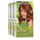 Naturtint Coloration | 100% Couverture Cheveux Blancs | Couleur Naturelle et Sans Ammoniaque | 1N Noir Ébène | – 170ml