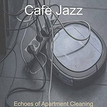 Echoes of Apartment Cleaning