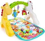 Zoom IMG-2 fisher price newborn to toddler