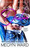 Destroying Declan (The Gilroy Clan Book 5)