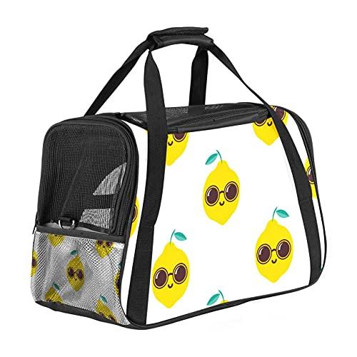 Cool Lemon con gafas de sol, transportador de viaje para mascotas de 43 x 25 x 30 cm, carga superior para gatos pequeños y medianos, perros pequeños de hasta 6,8 kg