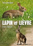 Lapin et lièvre leurs chasses