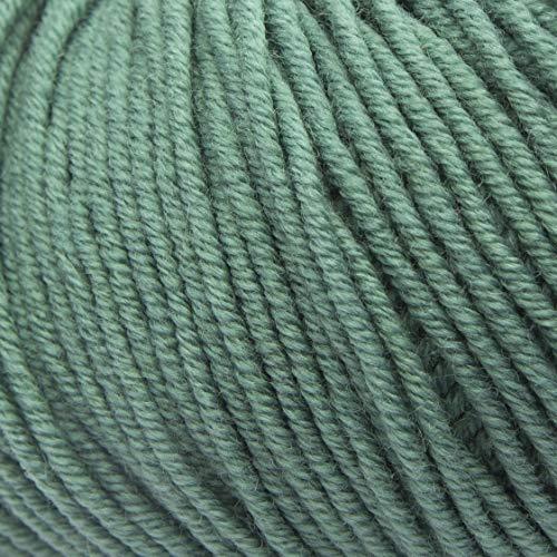 ggh Maxima | Merinowolle (mulesing Free) | 50g Wolle zum Stricken oder Häkeln | Farbe 065 - Berylgrün
